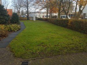 Peters hoveniersbedrijf uit Koudekerk aan den Rijn, het adres voor bedrijfstuinen