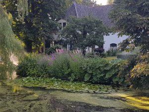 Peters hoveniersbedrijf uit Koudekerk aan den Rijn, het adres voor uw natuurlijke en diervriendelijke tuin